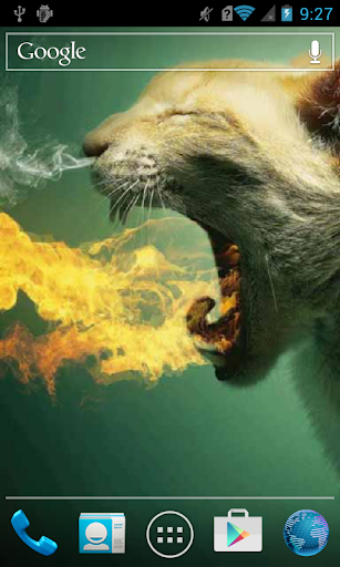 Fire Breathing Cat Live
