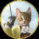 Baroque Bohemian Cats Tarot v2.52