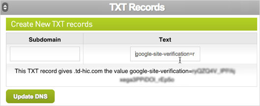 TXT Record Text field