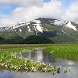 尾瀬国立公園:尾瀬ヶ原(JP015)