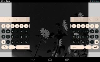 Screenshot of Galego Keyboard Plugin