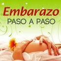 Embarazo Paso a Paso icon