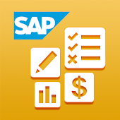 SAP Business One Finance and Accounting.