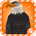 Virtual Pet Eagle