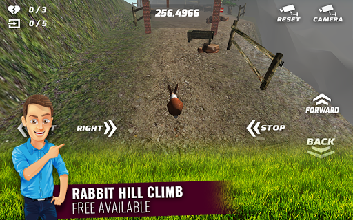 Cute Rabbits Hill Climb
