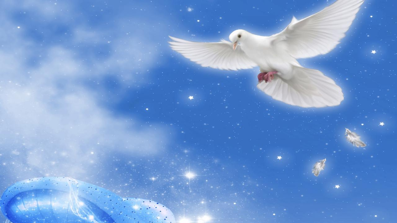 FREE ANGELS LIVE WALLPAPER HD - screenshot