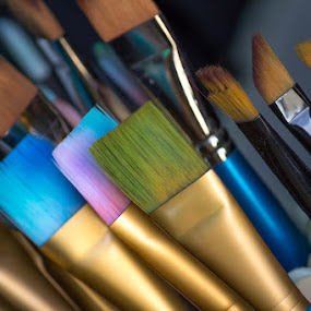 Colorful Brushes by Paul Cushing - Artistic Objects Other Objects ( color, art, paint, brush )