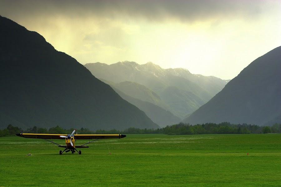 Plane in the meadow by Matevz Skerget - Transportation Airplanes ( plane, fog, meadow, transportation )