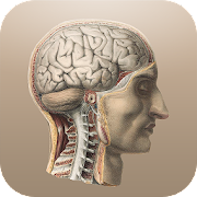 App Classic Anatomy APK for Windows Phone