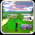 Buku Olahraga Woodball