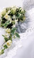Screenshot of Wedding Wallpapers