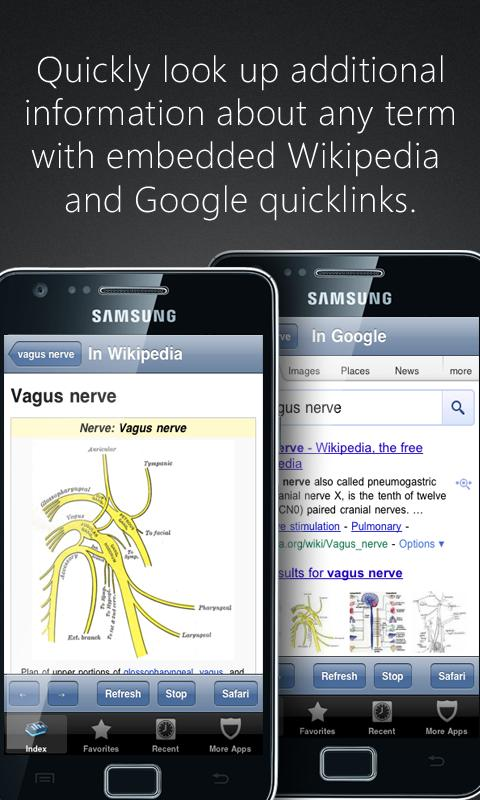 Anatomy Pronunciations - screenshot