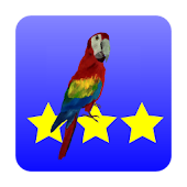 3 Stars in Birds