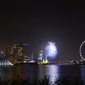 Singapore Skyline by Kester Kiew - Buildings & Architecture Office Buildings & Hotels ( fireworks, architecture, singapore )