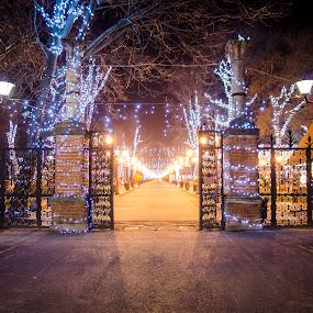 Santa's Home by Stefan Ungureanu - City,  Street & Park  City Parks ( bucharest, decoration, santa claus, city park, poles, mogosoaia, nightscape )