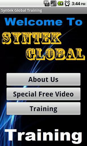 in Syntek Global Biz