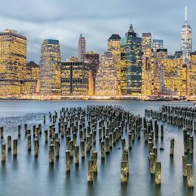 Lower Manhattan by Ronald Susaya - Uncategorized All Uncategorized ( lights, world trade, lower manhattan, brooklyn bridge park, east river, usa,  )