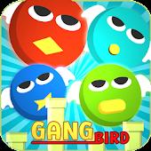 4 bird gangs