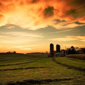 Lancaster Co. Sunrise by Troy Snider - Landscapes Prairies, Meadows & Fields ( field, clouds, farm, dawn, sky, barn, hay, sunrise, silo, farming )