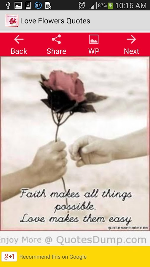 Flower Love Quotes Enchanting Love Flowers Quotes  Android Apps On Google Play