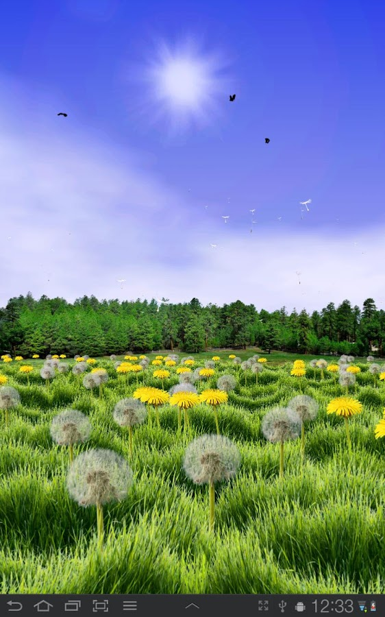 Dandelions Free Live Wallpaper- screenshot