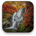 Herbst Animierte Wallpaper icon