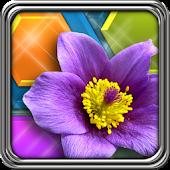 HexLogic - Gardens