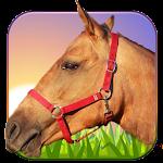 Horse Ride 3D 1.6