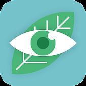 Eye Safe Guard - Screen Filter
