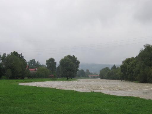 Osława
