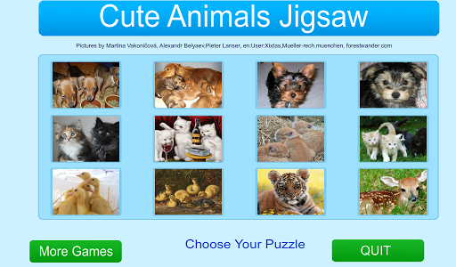 Cute Animals Jigsaw