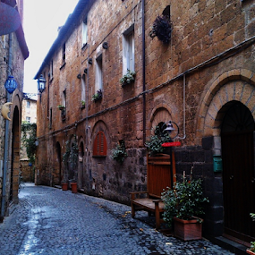 Orvieto - Italy by Marcello Toldi - City,  Street & Park  Vistas