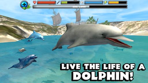 Dolphin Simulator image   11