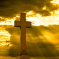 App Biblia Latinoamericana APK for Windows Phone