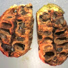 Gall dissection