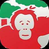 Borneo Orangutan Survival Aus