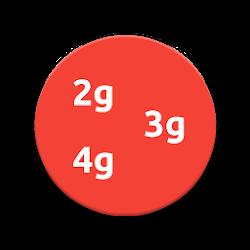 2g-3g-4g switcher