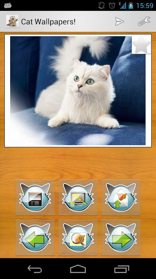 Cat Wallpapers! - screenshot