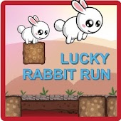 Lucky Rabbit Run