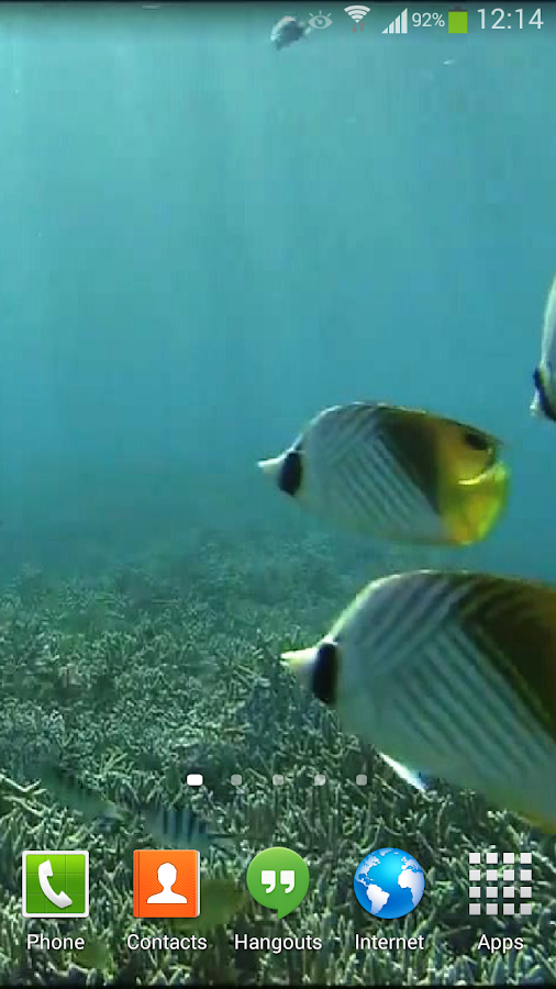 Tropical Fish Underwater Live- screenshot