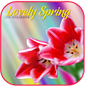 Lovely Spring LiveWallpaper