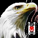 Beşiktaş Canlı Duvar Kağıdı icon