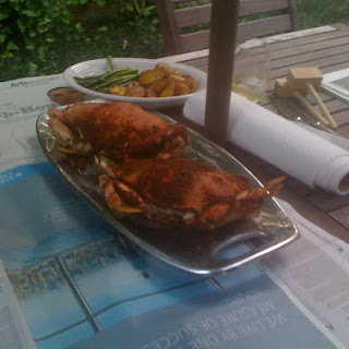 Maryland Style Steamed Dungeness Crabs.