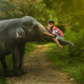 little elephant with child by Muhamad Anshorullah - Digital Art Animals