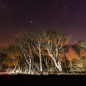 by Ben Leng - Landscapes Starscapes