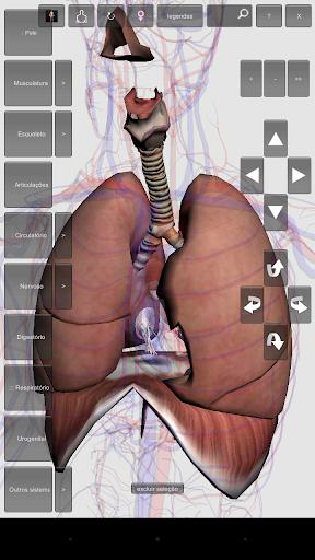 Introdução à Anatomia Humana 05