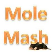 Chris' MoleMash