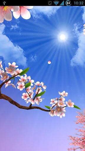 Sun Seasons Live Wallpaper