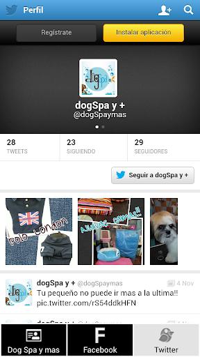 Dog Spa y +