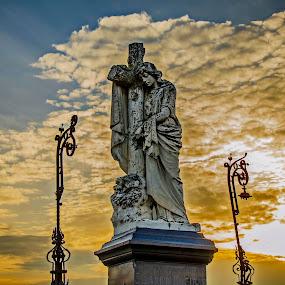 In memoriam by Vanja Vidaković - City,  Street & Park  Cemeteries (  )
